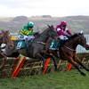 JP McManus's Saint Roi set to miss Champion Hurdle at Cheltenham