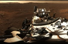 NASA releases panorama view of landing site of Perseverance rover on Mars