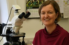 Dr Linda Mulligan appointed chief State Pathologist