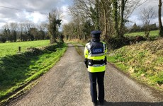 Third body found following Garda search connected to deaths of two brothers in Mitchelstown
