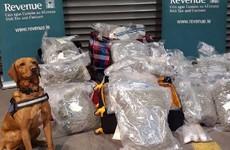 Revenue seizes €1.2 million worth of cannabis at Dublin Port