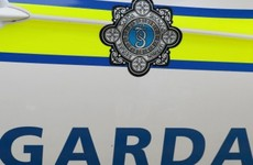 Garda injured during course of arrest at house party in Dublin