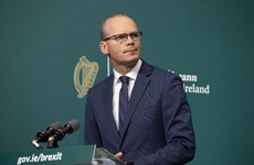 Coveney urges anyone with information on alleged abuse in the Curragh to contact gardaí