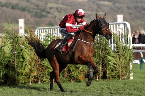 Tiger Roll pictured earlier this year.