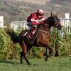 Tiger Roll withdrawn from Grand National over 'unfair' weight