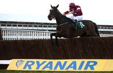 Irish amateur jockey James to face hearing over dead horse video