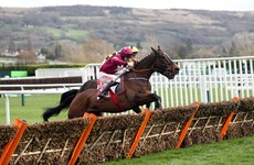 Johnny Ward: Cheltenham a symbol of how our lives have changed in ways we didn't think possible