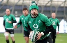 'Having a fit Conor Murray for the last two games would be brilliant'