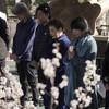 Japan falls silent to mark decade since tsunami disaster