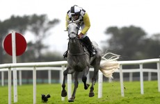 5 long shots worth a punt in this year's Cheltenham Festival