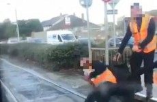 Unfair dismissal claim fails after Luas operator fired inspector who knelt on passenger's legs for 10 minutes