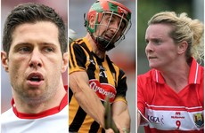 Six more GAA icons announced to feature in Laohcra Gael series