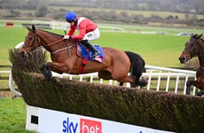 Envoi Allen could be aimed at Punchestown after disappointing Cheltenham fall