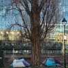 Slight decrease of 75 in February homelessness figures