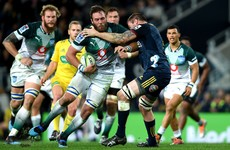 Munster set to sign South African lock Jenkins ahead of next season