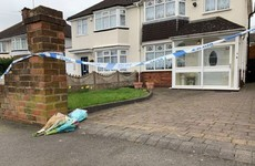 85-year-old woman dies after attack by two dogs from neighbour's house in the UK