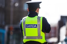Gardaí report 47 incidents involving tasers and stun devices last year including one on a dog