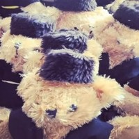 Belarus generals fired after teddy bear invasion