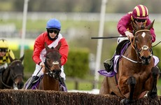 Cheltenham victor Minella Indo tops 11 in Punchestown mix