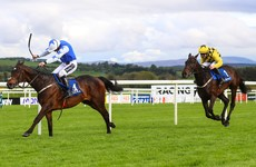 No Ruby, but Kemboy can clinch it again: Punchestown Gold Cup preview