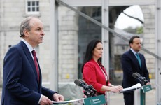 Taoiseach highlights difficulties in domestic use of the 'green cert' or vaccine bonus to access services