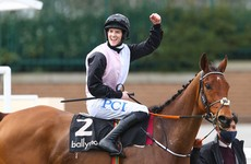 Cheltenham hero Bob Olinger withdrawn from Punchestown at late notice due to coughing