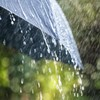 Status Yellow wind and rain warning in place for 11 counties