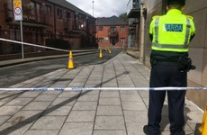 Man (20s) arrested in relation to murder of elderly man in Dublin