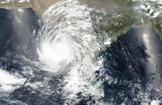 Twenty dead as 'biggest storm in 30 years' makes landfall in western India