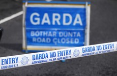 Child dies after being struck by vehicle in Co Longford