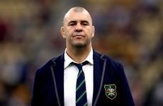 Former Australia head coach Cheika lands new role at Japanese club