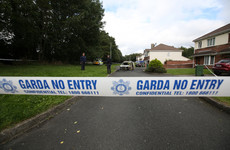 Four men plead guilty in connection with shooting of gangland criminal in Dublin