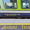 Teenagers arrested after ambulance personnel 'came under attack' at Dart station