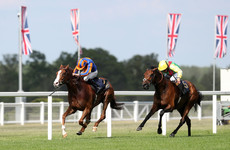 Love delivers for Aidan O'Brien in Prince of Wales' Stakes