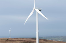Court quashes permission for proposed Longford windfarm, the joint-tallest structure in Ireland