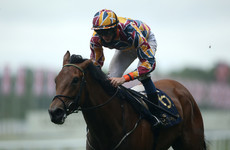 Create Belief first Royal Ascot winner for Johnny Murtagh as trainer
