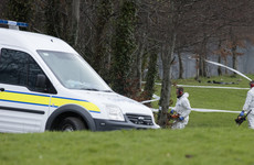 Construction worker found in Dublin suburban park died from extensive blunt force trauma