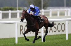 Mullins and Moore again the perfect combination at Royal Ascot