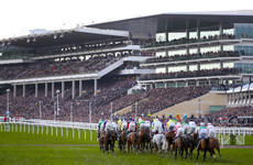 Plans to extend Cheltenham Festival to five days back on the table