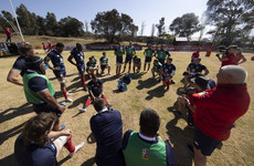 Boks boss Nienaber 'can't see the Lions tour being in jeopardy' due to Covid