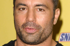 Your evening longread: The fans who think Joe Rogan is an underground star