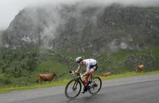 Champion Pogacar seizes lead as Tour enters Alps