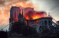 Paris officials accused of failing to protect locals' health after Notre Dame fire
