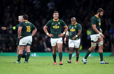 Boks' clash with Georgia cancelled due to 16 Covid cases across both camps