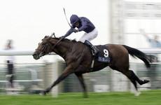 World champion stallion Galileo dies aged 23