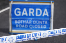 Two men in critical condition following crash in Co Limerick
