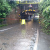 Flash floods cause chaos as London receives a month's worth of rain in one day