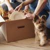 'Put all your cables in ziplock bags': How to move house like a pro, from packing your boxes to settling in