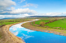 Water quality in almost half of Ireland's rivers and lakes deemed unsatisfactory