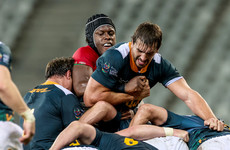 Lions suffer first loss as Erasmus' South Africa serve reminder of their class